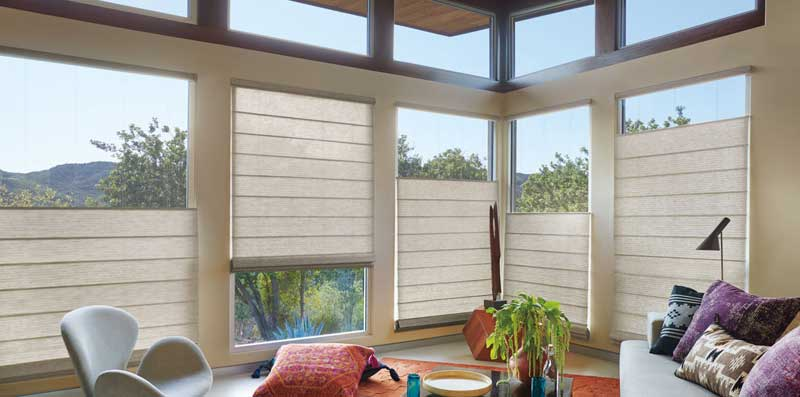 Hunter Douglas Woven Wood Blinds